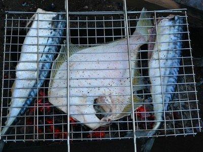 ryba-na-kostre