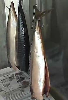 подвешиваем рыбу