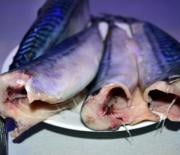 Особенности приготовления варёной рыбки