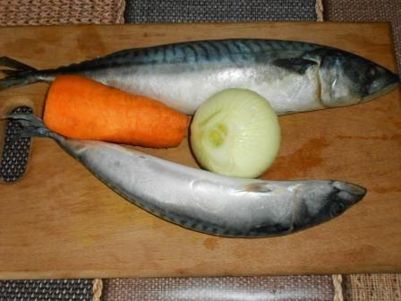 скумбрия, лук, морковь