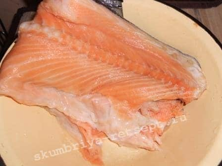 хребет лосося